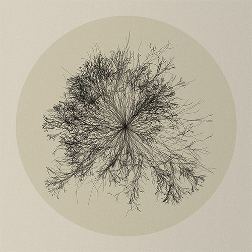 Diane Lange - Recursion Flower